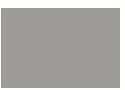 logo lyonnaise & savez